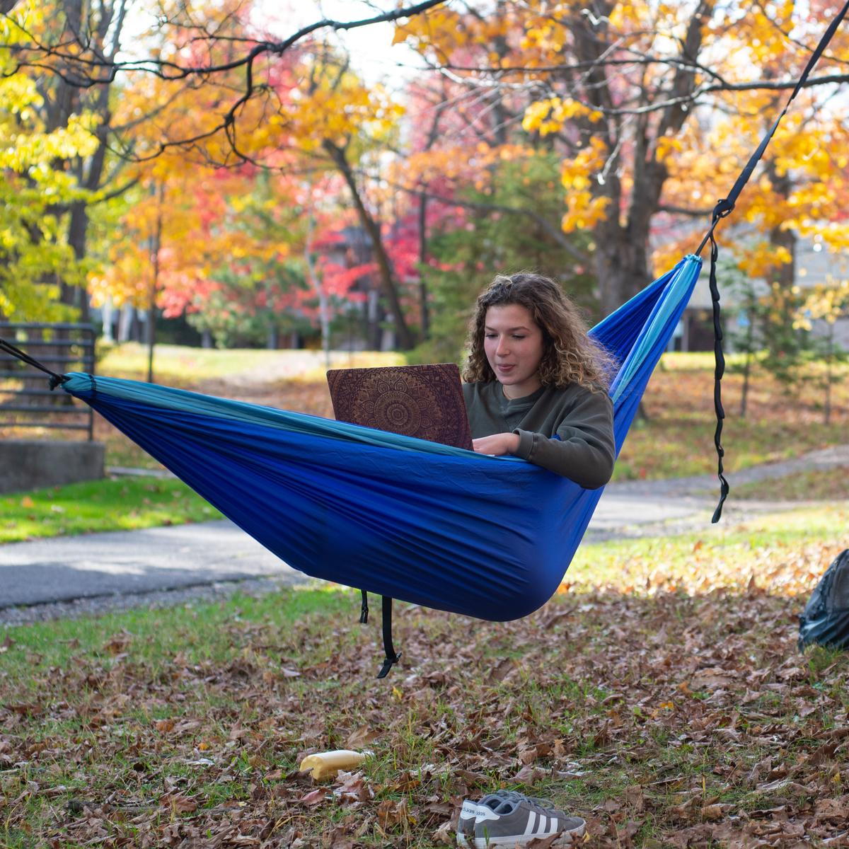 Student sitting in a hammock working on a laptop.