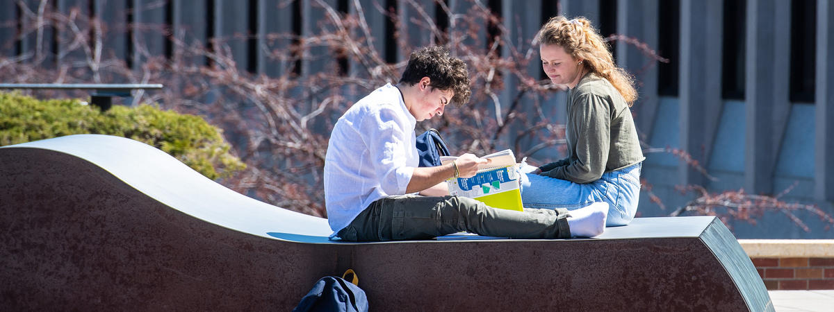 Students studying on book on Kirby Terrace