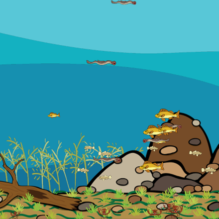 Screen shot of the project with just the invasive species of fish
