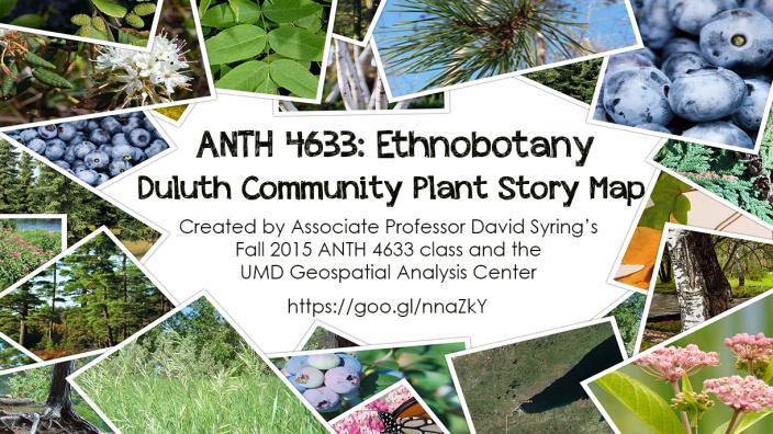 Poster: Anth 4633, Ethnobotany