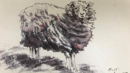 Ink drawing of a sheep