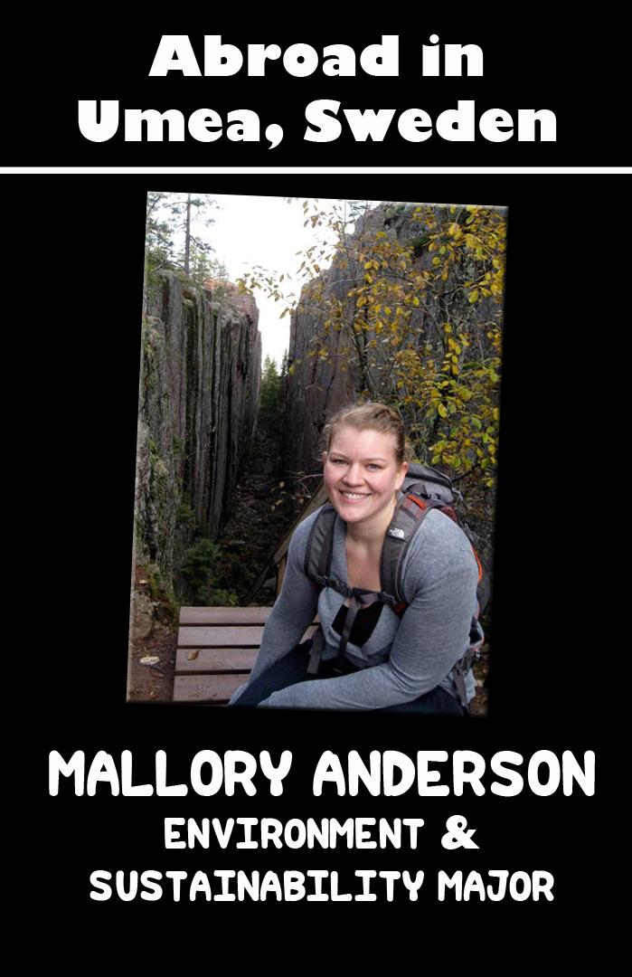 Mallory Anderson: Umeå, Sweden