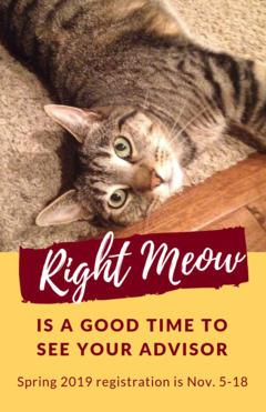 right meow see your advisor poster